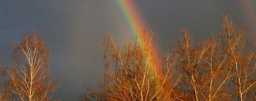 Regenbogen über unserer CvS-Schule